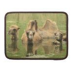 Camellos Yum Funda Para Macbooks