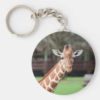 Camelopard (giraffe) basic round button keychain