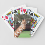 Camelopard (giraffe) bicycle playing cards