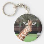 Camelopard (giraffe) keychain