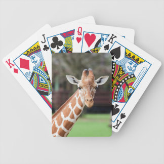 Camelopard giraffe bicycle card deck