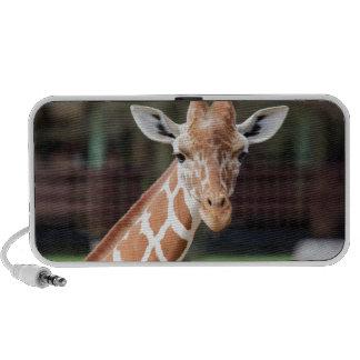 Camelopard (jirafa) altavoz de viaje