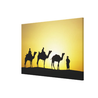 Camels and camel driver silhouetted at sunset, 2 canvas print