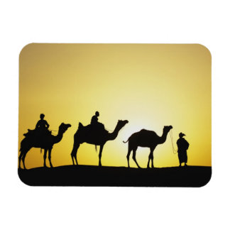 Camels and camel driver silhouetted at sunset, 2 flexible magnets