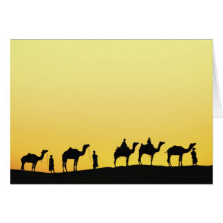 Camels and camel driver silhouetted at sunset, 3 greeting card