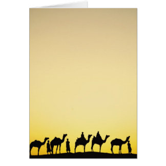 Camels and camel driver silhouetted at sunset, 4 greeting card