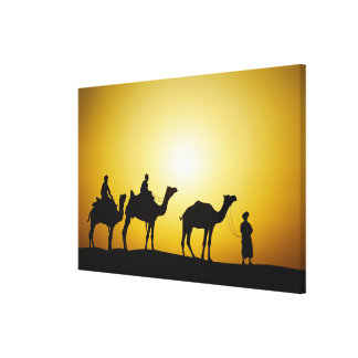 Camels and camel driver silhouetted at sunset, canvas prints