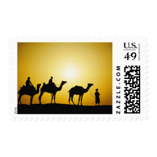 Camels and camel driver silhouetted at sunset, postage