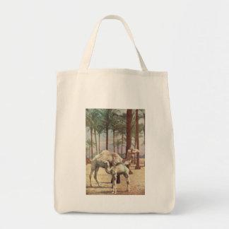 Camels Bags