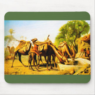 Camels drinking at an oasis mouse pad