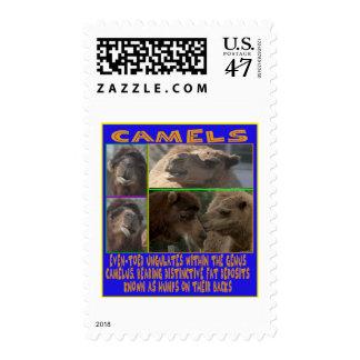CAMELS - even-toed ungulates Postage
