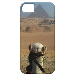 Camel's Eye View of Giza iPhone SE/5/5s Case