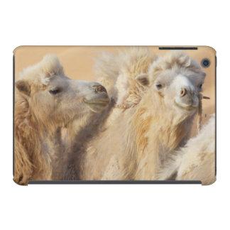 Camels in a desert convoy iPad mini case