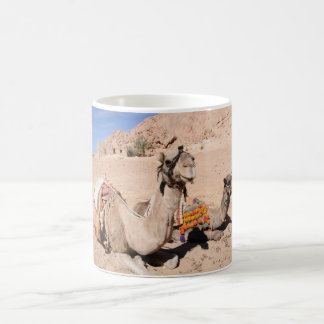 Camels in the desert at St. Catherine's Mugs