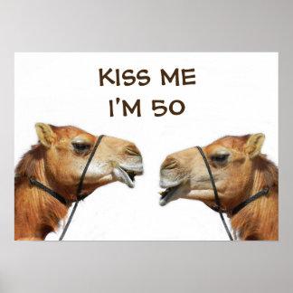 Camels Kissing Funny Poster