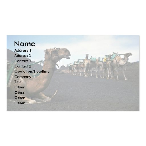 Camels, Lanzarote Business Card Template