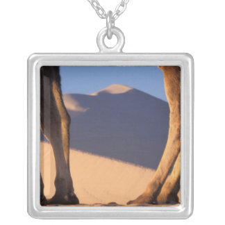 Camel's legs with sand dunes, Dunhuang, Gansu Silver Plated Necklace