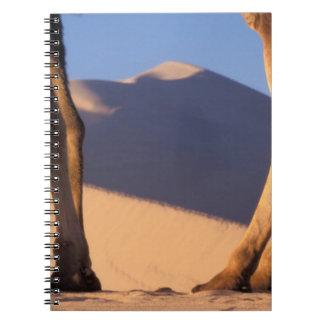 Camel's legs with sand dunes, Dunhuang, Gansu Spiral Notebook