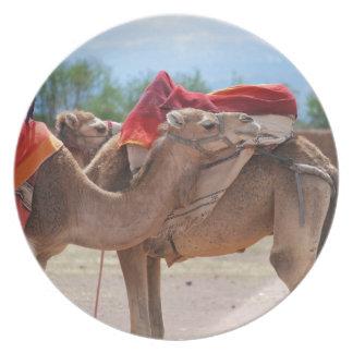 Camels Melamine Plate