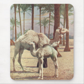 Camels Mouse Pad