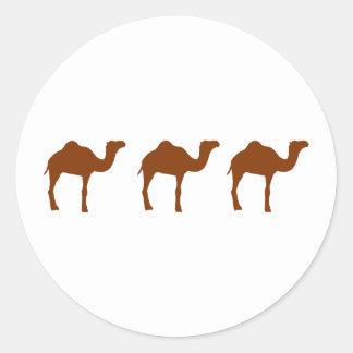 Camels Round Sticker