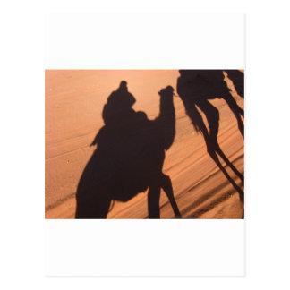 Camel's trail in Jordan desert Post Cards
