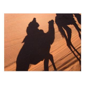 Camel's trail in Jordan desert Postcard