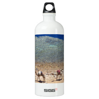 Camels Walking By the Blue Hole Aluminum Water Bottle