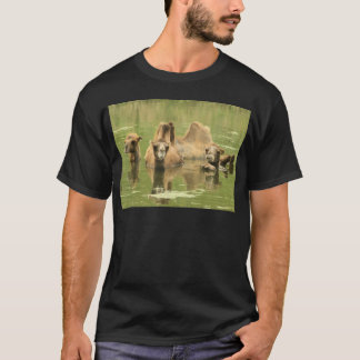 Camels Yum T-Shirt