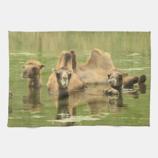 Camels Yum Towel
