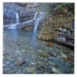 Cameron cae en parque nacional de los lagos Watert Azulejo Cuadrado Grande