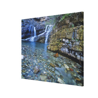 Cameron Falls in Waterton Lakes National Park in 2 Canvas Print