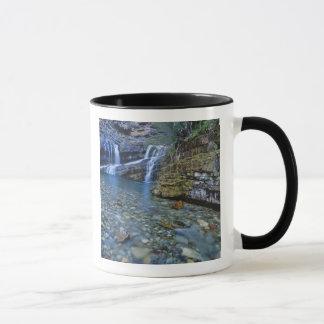 Cameron Falls in Waterton Lakes National Park in 2 Mug