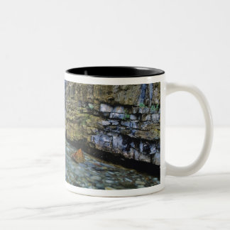 Cameron Falls in Waterton Lakes National Park in 2 Coffee Mug