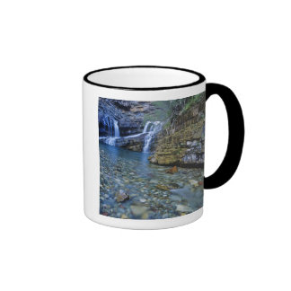 Cameron Falls in Waterton Lakes National Park in 2 Ringer Mug