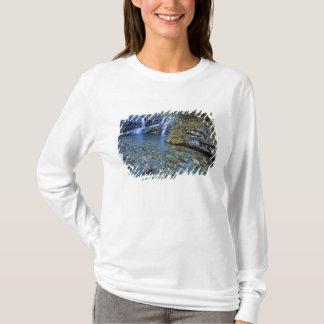 Cameron Falls in Waterton Lakes National Park in 2 T-Shirt