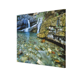 Cameron Falls in Waterton Lakes National Park in Canvas Print