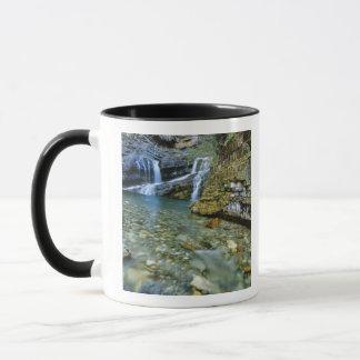 Cameron Falls in Waterton Lakes National Park in Mug