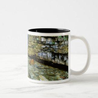 Cameron Falls in Waterton Lakes National Park in Two-Tone Coffee Mug