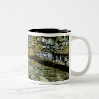 Cameron Falls in Waterton Lakes National Park in Two-Tone Coffee Mug