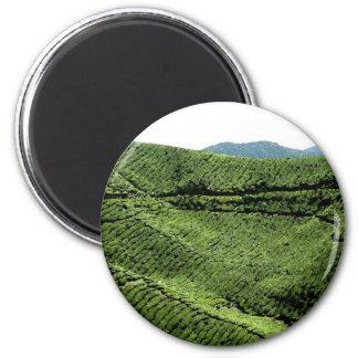Cameron Highland Tea Plantation, Malaysia 2 Inch Round Magnet