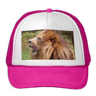 Cameron_toy_002_4x6 Trucker Hat