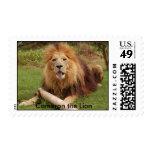 Cameron_toy_005_4x6, Cameron el león Franqueo