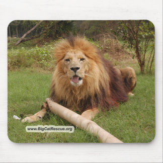 Cameron_toy_005-BCR Mouse Pad