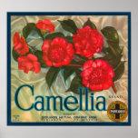 Camillia Brand Oranges Classic Fruit Crate Label Poster