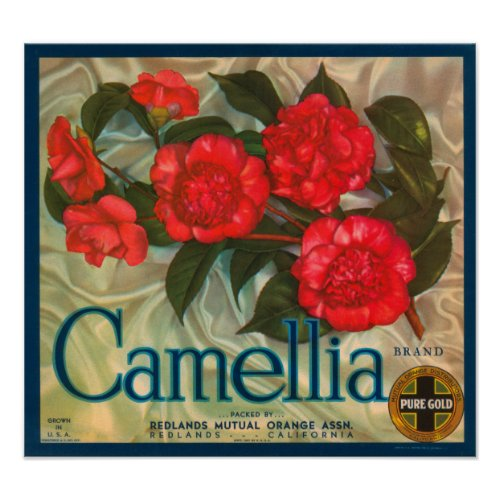 Camillia Brand Oranges Classic Fruit Crate Label