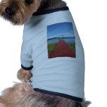 Caminan los tablones del NH Camisa De Perro
