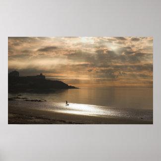 Caminando el perro en la playa de Douglas Póster