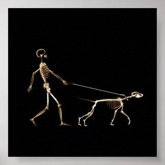Caminando el poster del perro