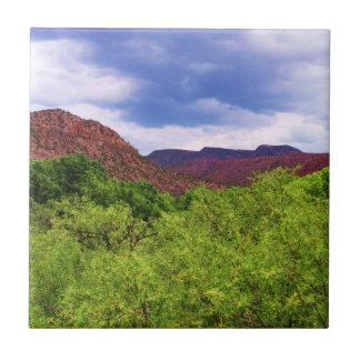Caminando el rojo de Sedona Arizona - hacia el sud Azulejo Cuadrado Pequeño
